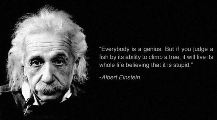 everybody-is-a-genius